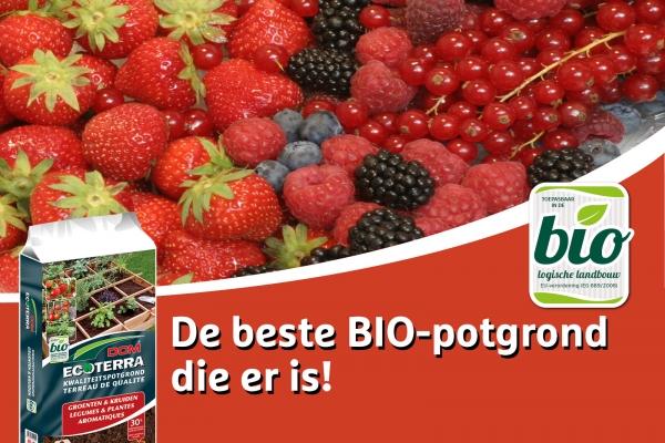 facebook-potgrond-groenten-kruiden-voor-fruit7ADD7592-3771-12D2-F6B2-027ABFE11A09.jpg